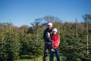James & Sarah, Christmas Trees at Tregaminion Farm